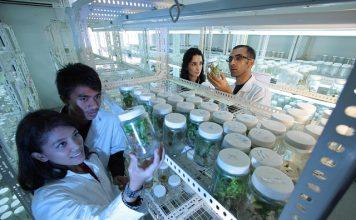 hardware in cannabis technology