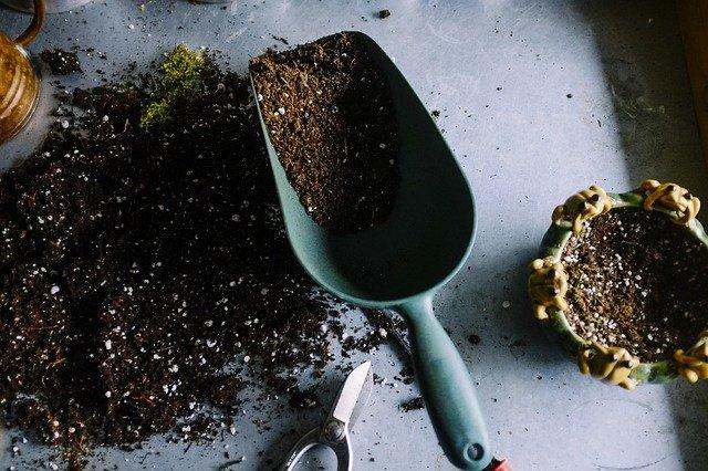 cannabis soil nutrition